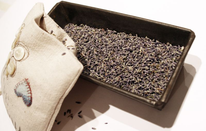 Lavender-pillow-15