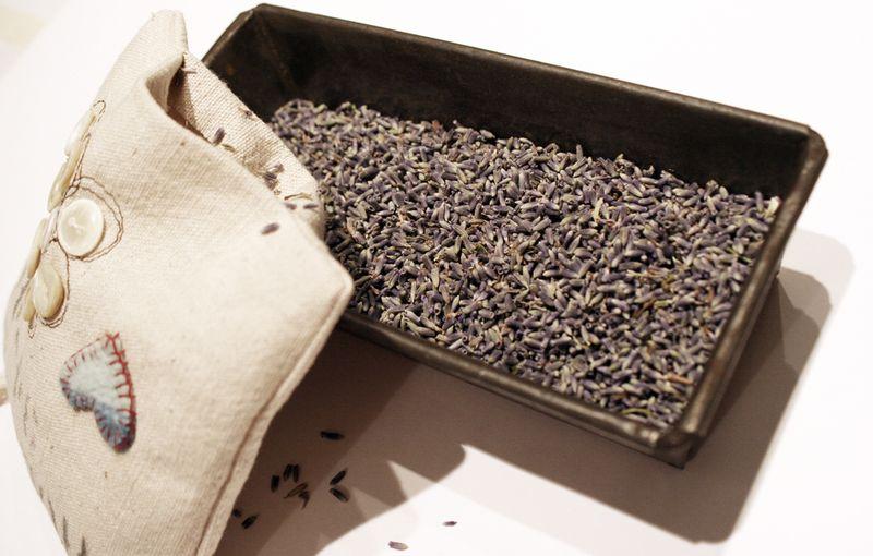 Lavender-pillow-15