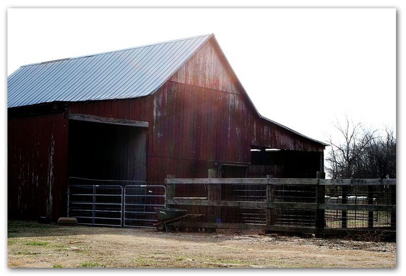 Old-tobacco-barn