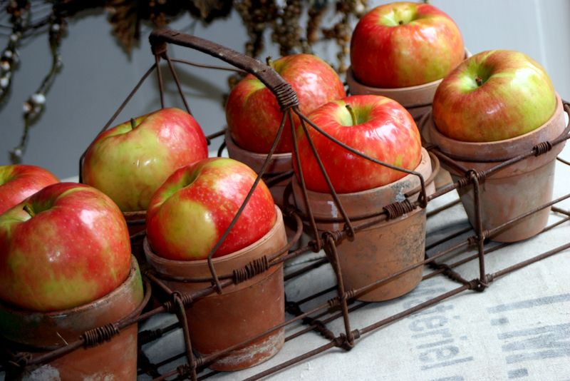 Honeycrisp-apples-2