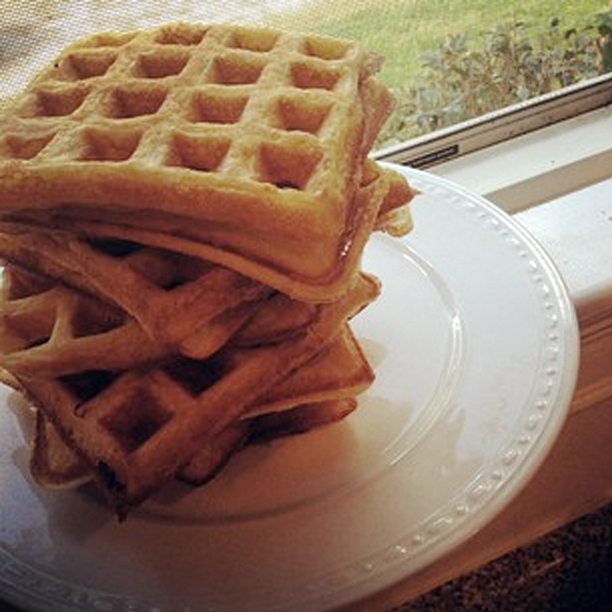 Waffles-on-plate