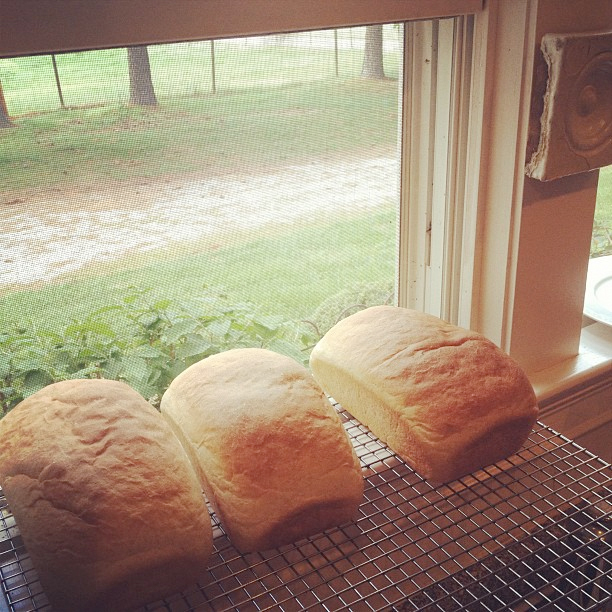 Bread-cooling